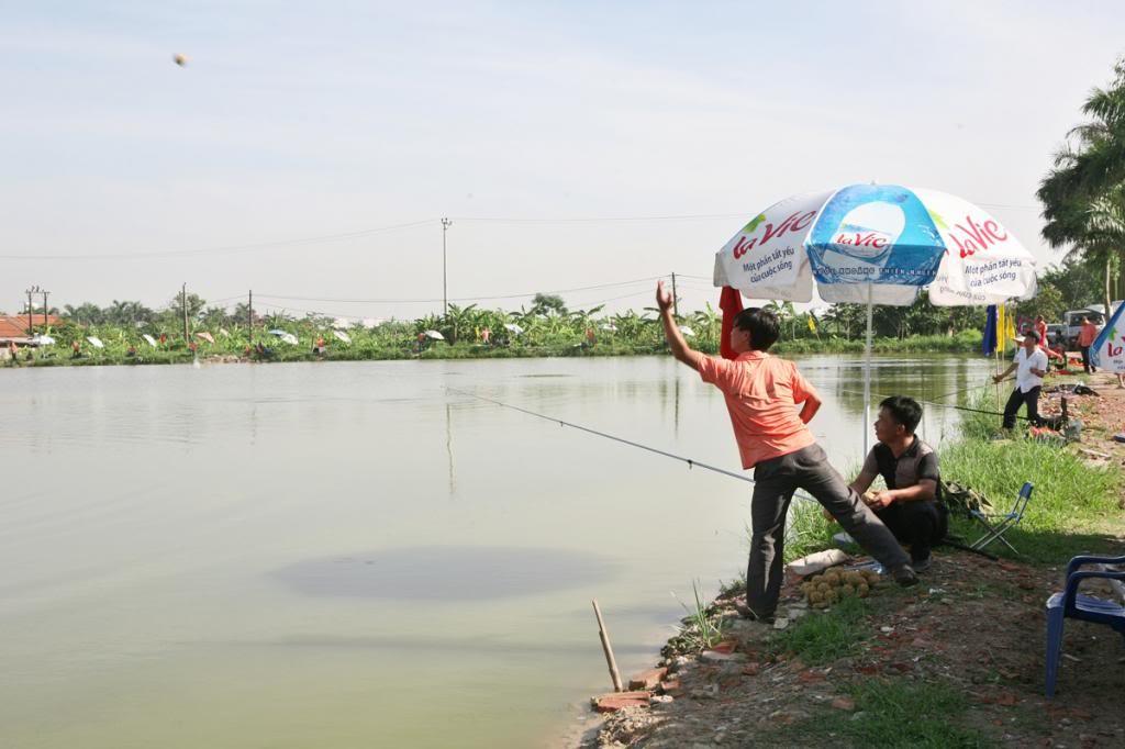 Thả thính trước khi câu cá