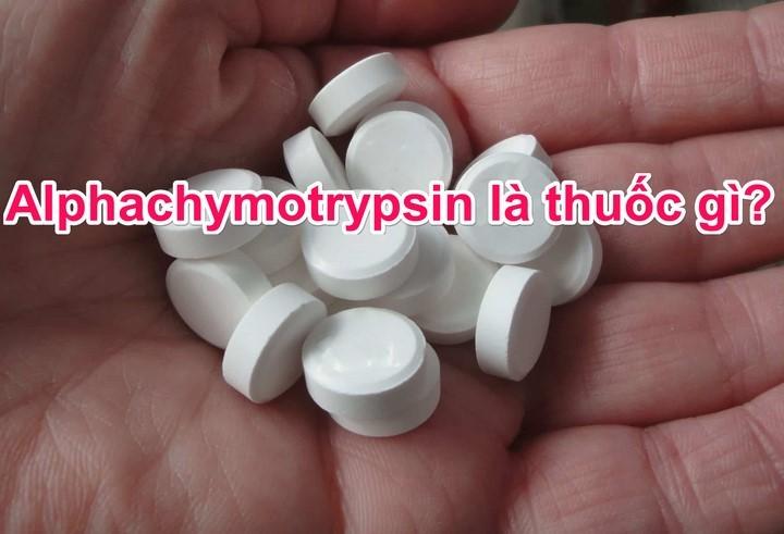 Alpha chymotrypsin là thuốc gì