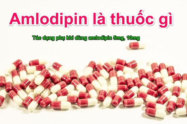Ampolipin là gì