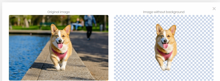Tách nền ảnh chó corgi với Remove.bg