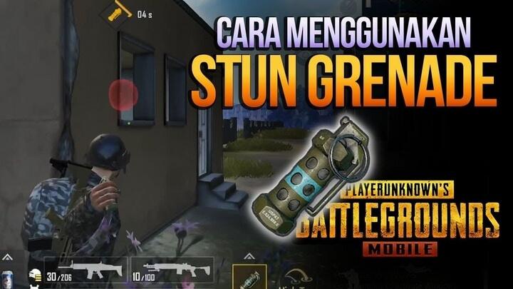Stun Grenade – Lựu đạn gây choáng