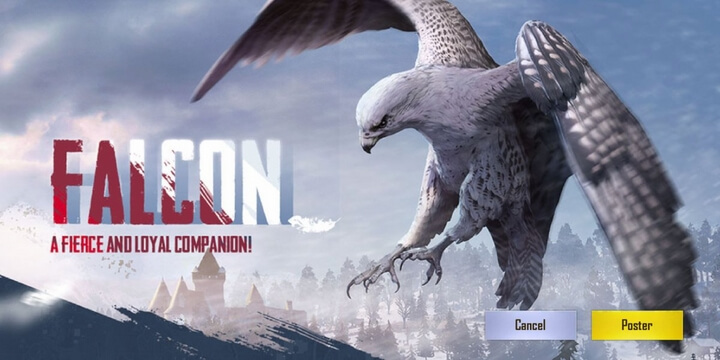 Falcon (Sắp ra mắt) bạn đồng hành